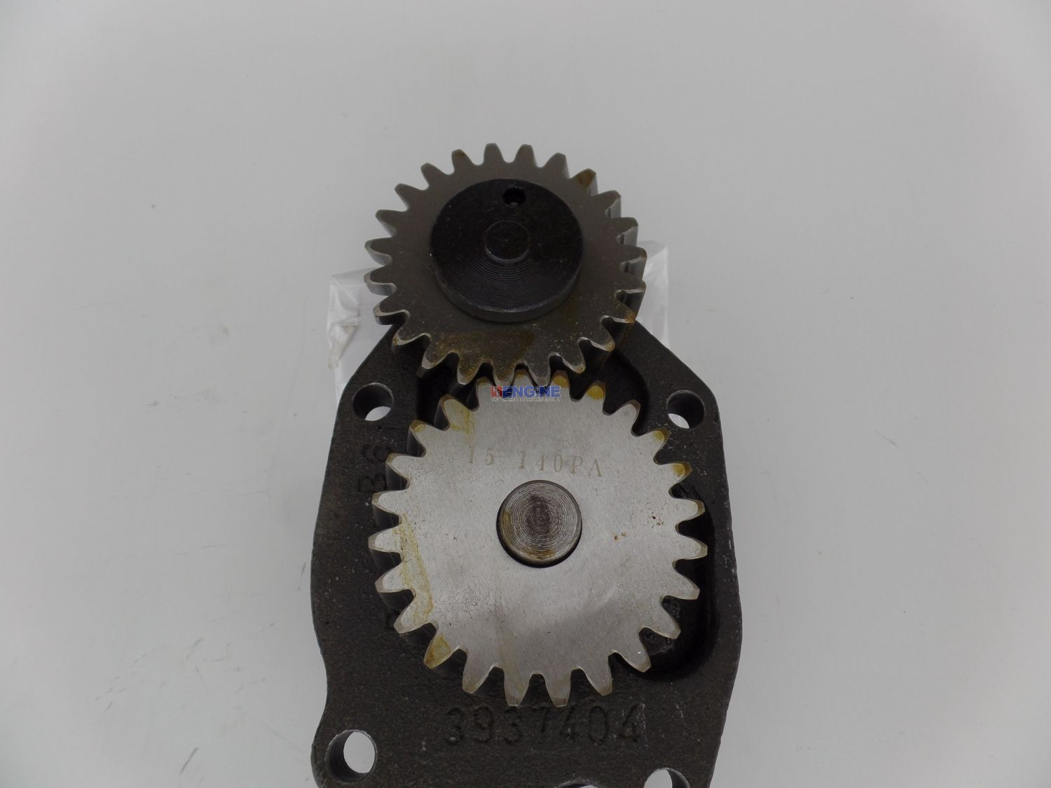 Rareelectrical NEW HEAVY DUTY OIL PUMP COMPATIBLE WITH CUMMINS ISF3.8 CM2220 CM2350 F109 3924720 J937404 3926203 3930337 3937404 3941742
