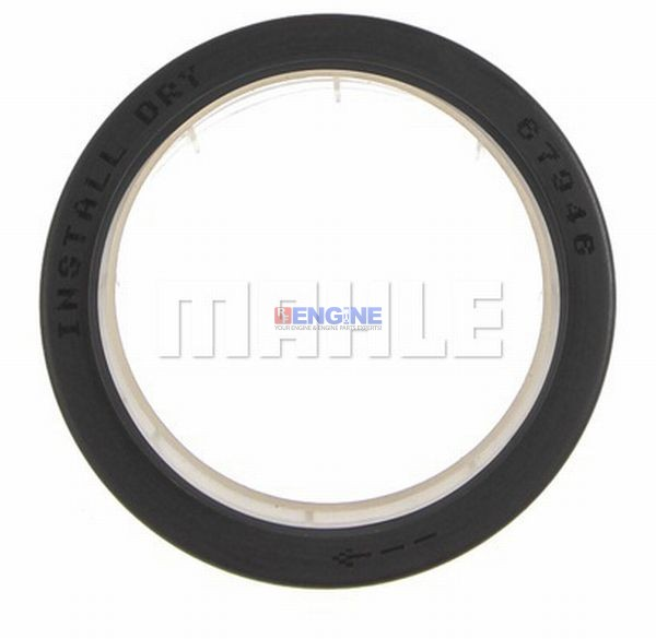 Fits Mack MC E7, 11 9, 730 Timing Cover Seal New 446GC310P12, 446GC310P2,  25633195