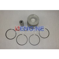 Ford / Newholland 256T, BSD442T Piston Kit