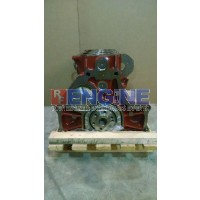 Ford / Newholland 304 Engine Short Block