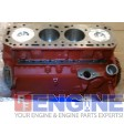 Engine - Short Block Recondition Ford / Newholland 172D 172D Block# CONF6015J